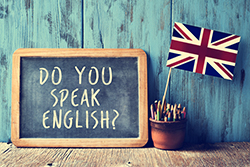 Английский язык с носителем языка (индивидуально)